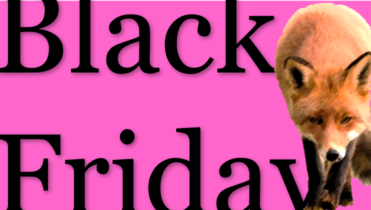 Black Friday sluipt Nederland binnen en wordt elk jaar groter. Let wel op, niet alles is een aanbieding. Check online of iets alleen een marketingstunt, of ook echt een deal is.